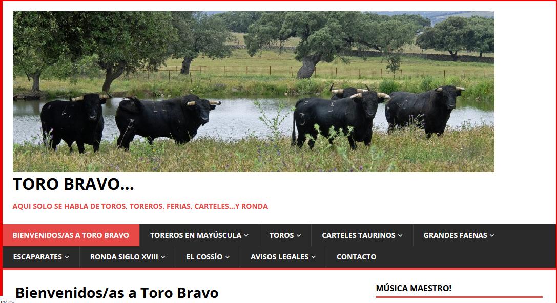 TORO BRAVO Tauromaquia